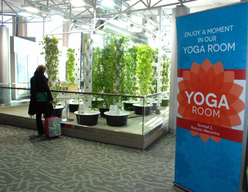 2D9907665-yoga-ord